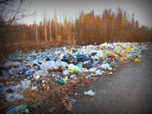 Отходы в Солнечногорске