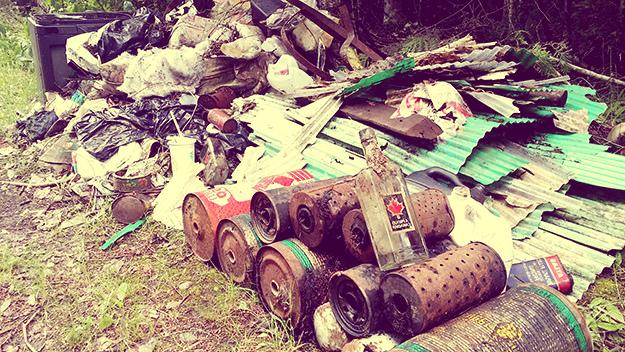 вывоз мусора в Деденево