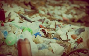 Цены на вывоз мусора в Голицыно
