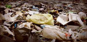 Вывоз мусора в регионах